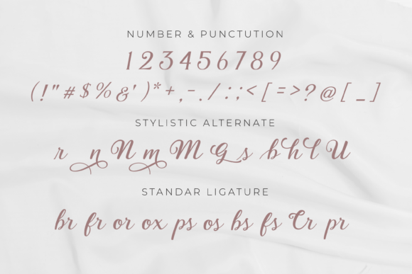 Print on Demand: Valenia Script & Handwritten Font By Typestory - Image 6