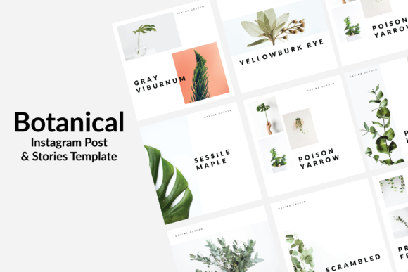 Print on Demand: Botanical Instagram Template Graphic Graphic Templates By nirmala.graphics