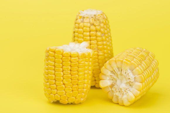 Yellow Corn on Yellow Background Graphic Food & Drinks By Azman