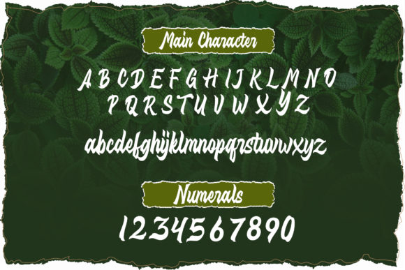 Print on Demand: Distropica Display Font By Typia Nesia - Image 8