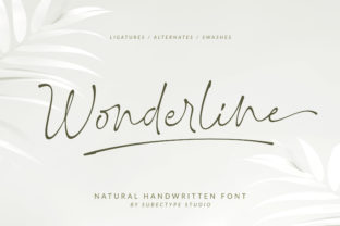 Print on Demand: Wonderline Script & Handwritten Font By Subectype