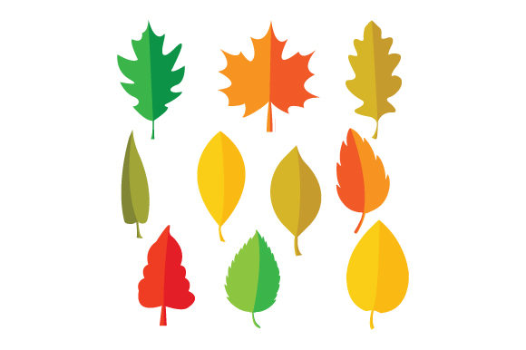 Print on Demand: Colorful Leaf Shape Graphic Graphic Templates By curutdesign