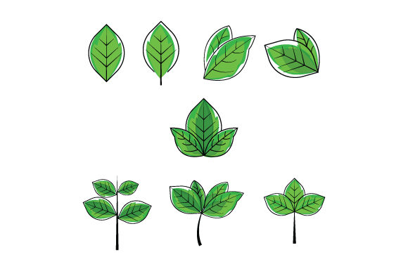 Print on Demand: Leaf Shape with Green Color Graphic Graphic Templates By curutdesign
