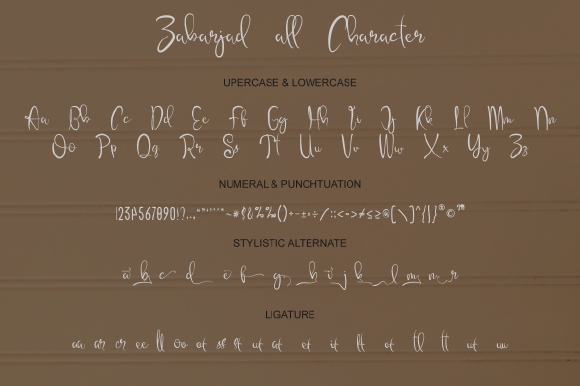 Print on Demand: Zabarjad Script & Handwritten Font By IntrovArtZone - Image 6