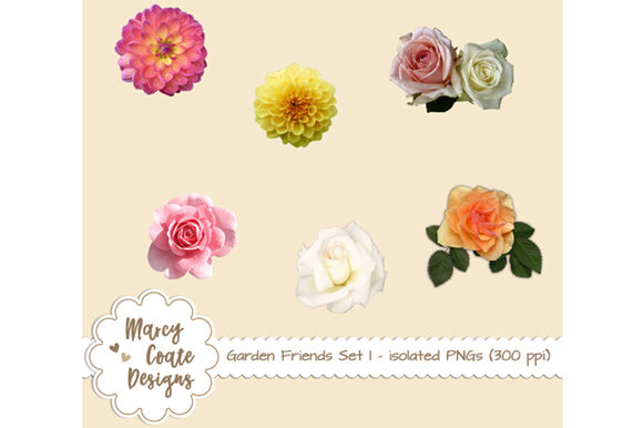 Garden Friends 1: Real Flowers Isolated Graphic Nature By MarcyCoateDesigns
