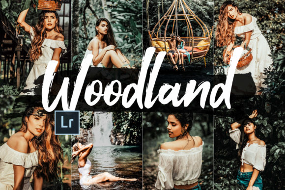 Print on Demand: 05 Woodland Lightroom Presets and ACR Graphic Actions & Presets By 3Motional