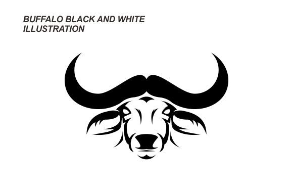BUFFALO BLACK and WHITE ILLUSTRATION Graphic Illustrations By therintproject