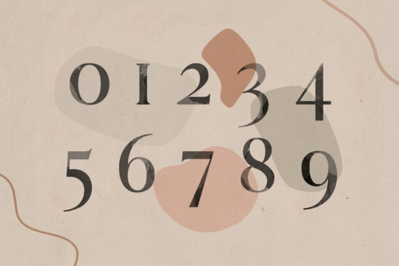 Print on Demand: Lovers Serif Font By SilverStag - Image 17