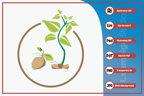 Print on Demand: Potatoes Seed Design Graphic Icons By leamsign