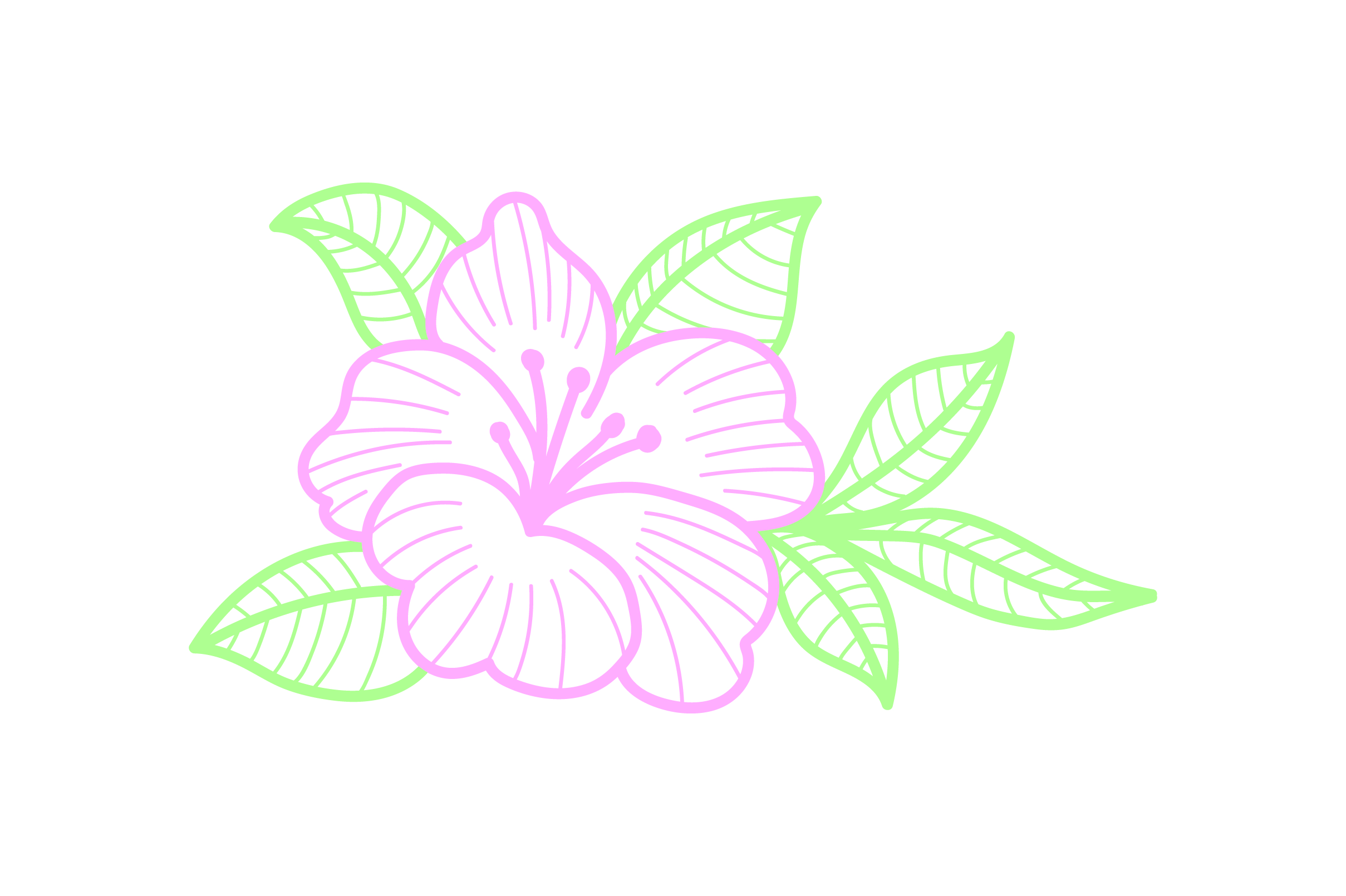 Hibiscus Outline Flower Svg Cut File By Creative Fabrica Crafts Creative Fabrica