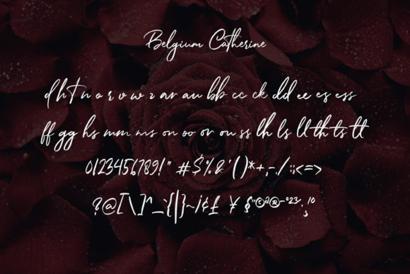 Print on Demand: Belgium Catherine Script & Handwritten Font By almarkhatype - Image 11