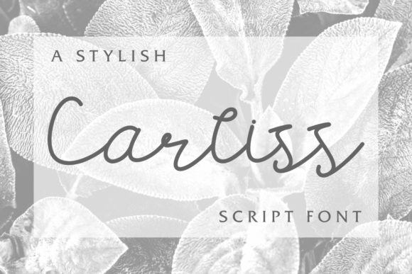 Print on Demand: Carllis Script & Handwritten Font By EdricStudio