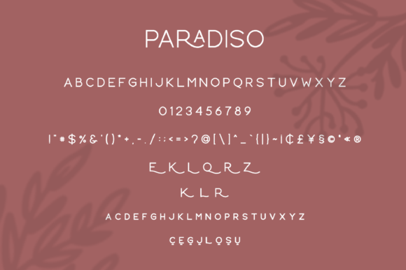 Print on Demand: Paradiso Sans Serif Font By Pen Culture - Image 11