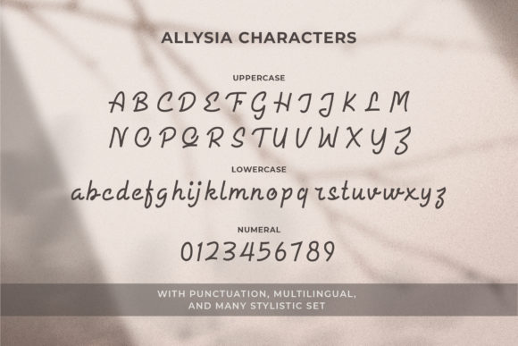 Print on Demand: Allysia Script & Handwritten Font By letter battoyart - Image 11
