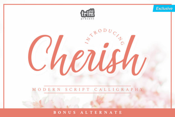 Print on Demand: Cherish Script & Handwritten Font By Trim Studio