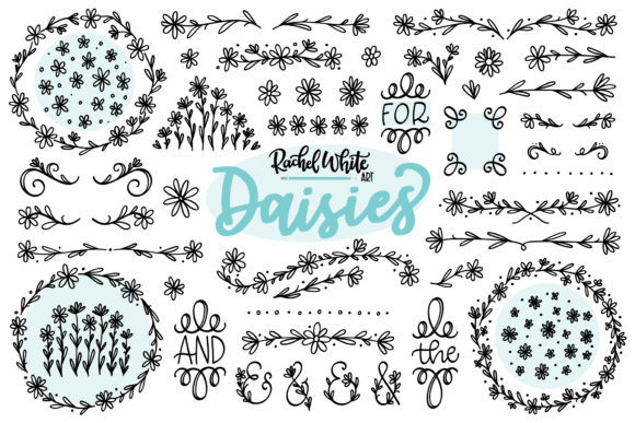 Daisies Graphic Illustrations By rachelwhiteart