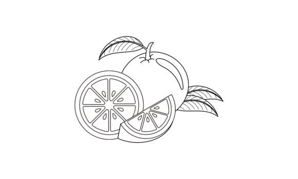 Coloring Book Orange to Educate Kids Logo Graphic Coloring Pages & Books Kids By DEEMKA STUDIO