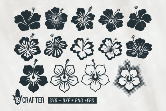 Download Free Hibiscus Flower Bundle Graphic By Great19 Creative Fabrica for Cricut Explore, Silhouette and other cutting machines.