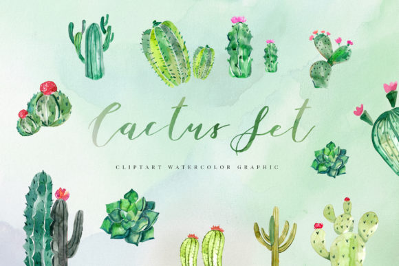 15 Watercolor Cactus Set Illustration Graphic Crafts By TMint