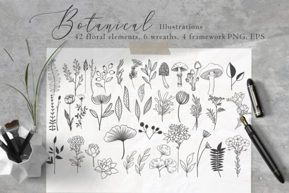 Print on Demand: Floral Botanical Illustrations Graphic Illustrations By By Anna Sokol