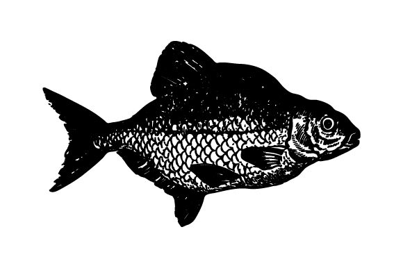 Print on Demand: Shadow Fish Clip Art Graphic Crafts By Huntype