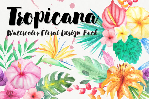 Watercolor Tropical Floral Pack Graphic Illustrations By Larysa Zabrotskaya
