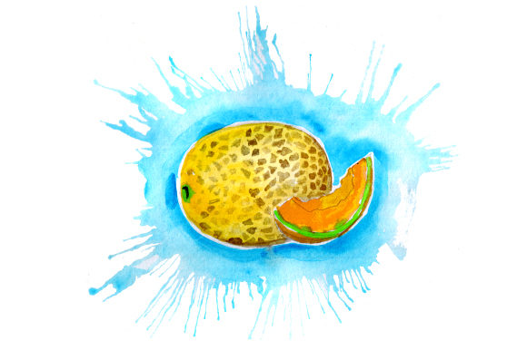 Download Free Cantaloupe In Watercolor Paint Splatter Style Svg Cut File By for Cricut Explore, Silhouette and other cutting machines.