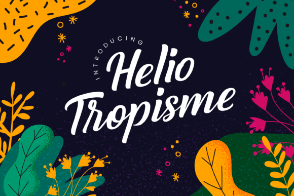 Print on Demand: Helio Tropisme Script & Handwritten Font By Typestory