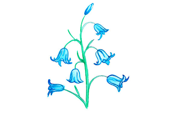 Download Free Bluebell In Watercolor Svg Cut File By Creative Fabrica Crafts for Cricut Explore, Silhouette and other cutting machines.