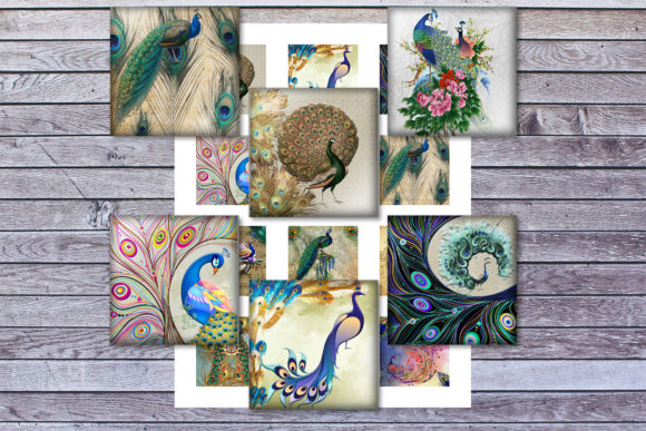 Birds Feather Peafowl Colorful Birds Graphic Crafts By denysdigitalshop