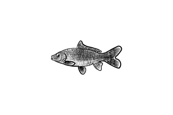Download Free Hand Drawn Poke Fish Logo Ideas Inspira Graphic By for Cricut Explore, Silhouette and other cutting machines.