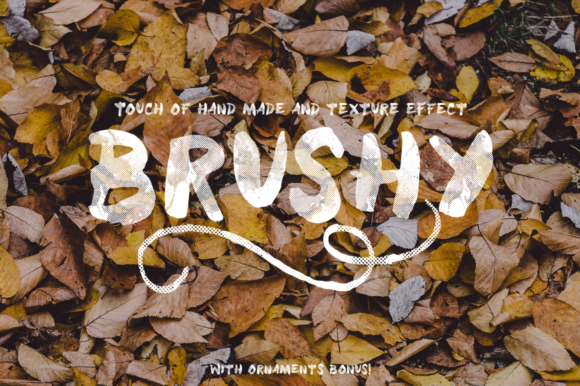 Print on Demand: Brushy Script & Handwritten Font By letrasupply - Image 1