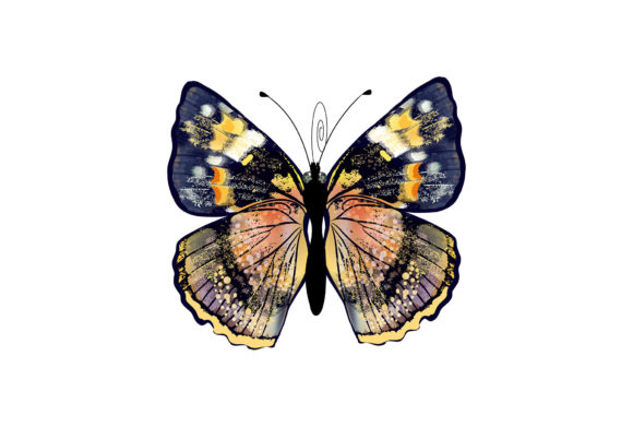 Butterfly 1 Graphic Illustrations By marku.stupic