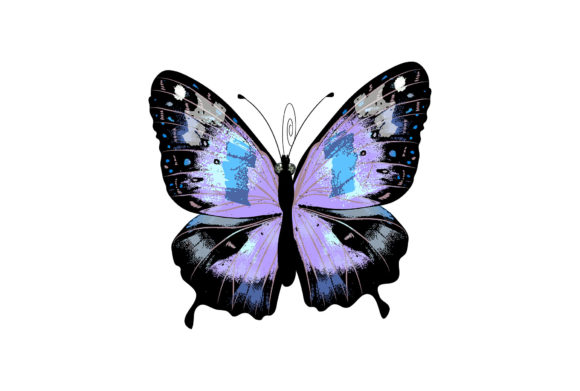 Butterfly 11 Graphic Illustrations By marku.stupic