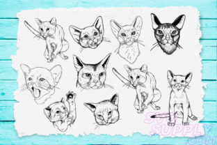 Print on Demand: Cat Lineart Bundle Graphic Print Templates By svgsupply