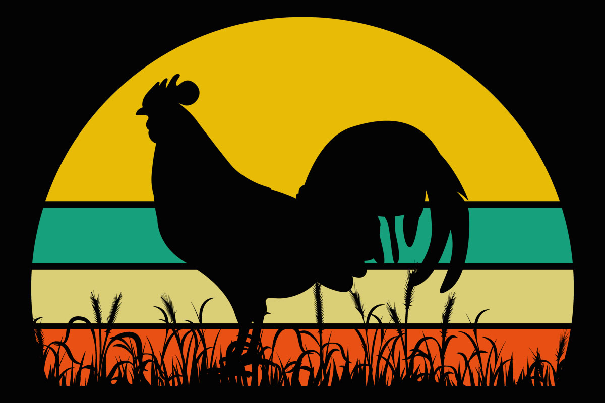 Chicken Retro Sunset Rooster Clipart (Graphic) by ...