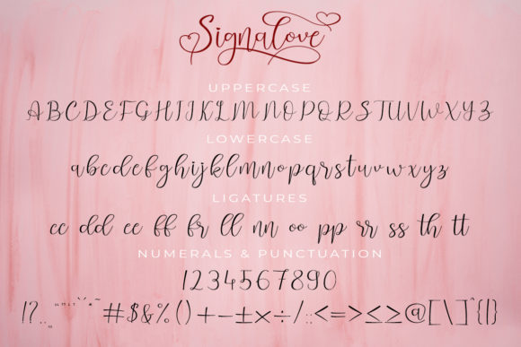 Print on Demand: Signalove Script & Handwritten Font By Madatype Studio - Image 8