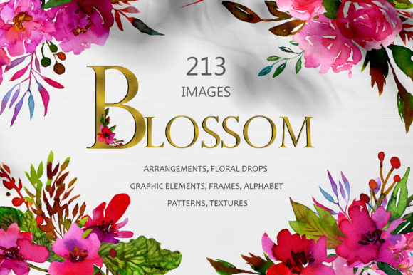 Watercolor Floral Collection Graphic Illustrations By Kooliibriiart