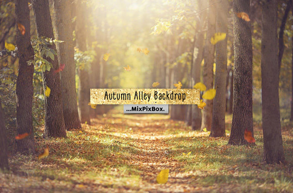 Print on Demand: Autumn Alley Backdrop Graphic Layer Styles By MixPixBox