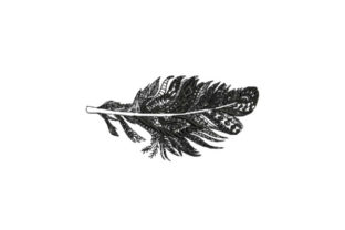 Feather Intricate Intricate Cuts Embroidery Design By Embroidery Designs