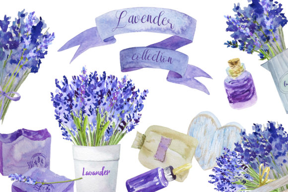 Lavender Collection Graphic Illustrations By lena-dorosh