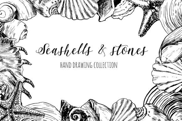 Seashells & Stones Set Graphic Objects By lena-dorosh