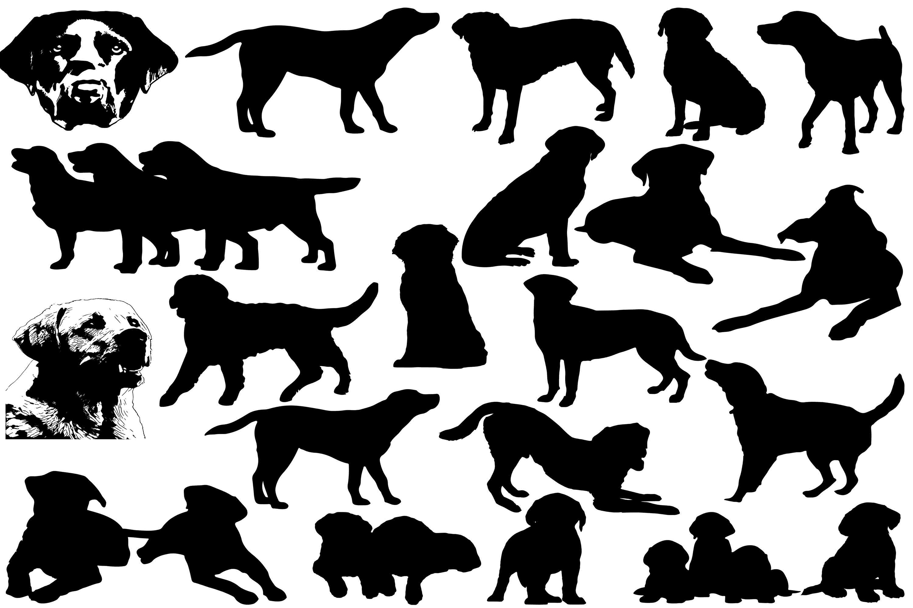 Download Free Labrador Retriever Silhouettes Graphic By Retrowalldecor for Cricut Explore, Silhouette and other cutting machines.