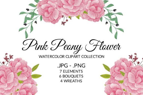 Pink Peony Flower Watercolor Clipart Set Graphic Illustrations By elsabenaa