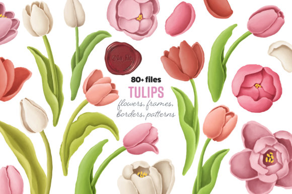 Print on Demand: Tulip Flowers Patterns Borders Gráfico Ilustraciones Por Architekt_AT