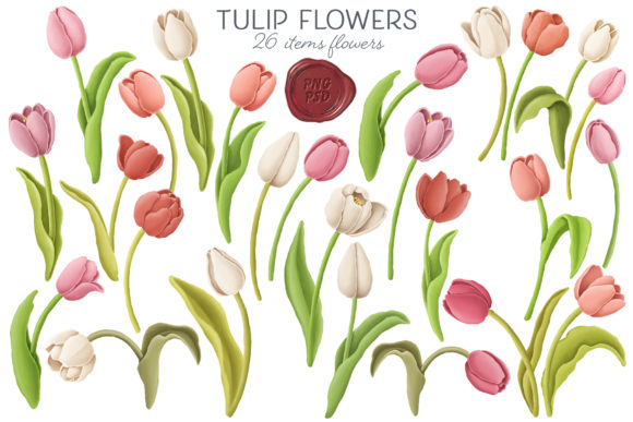 Print on Demand: Tulip Flowers Patterns Borders Graphic Illustrations By Architekt_AT - Image 7