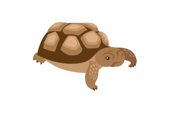 Download Free African Sulcata Tortoise Svg Cut File By Creative Fabrica Crafts for Cricut Explore, Silhouette and other cutting machines.