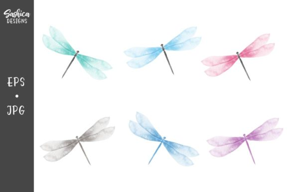 Dragonfly Watercolor Vector Illustration Graphic Illustrations By sashica designs