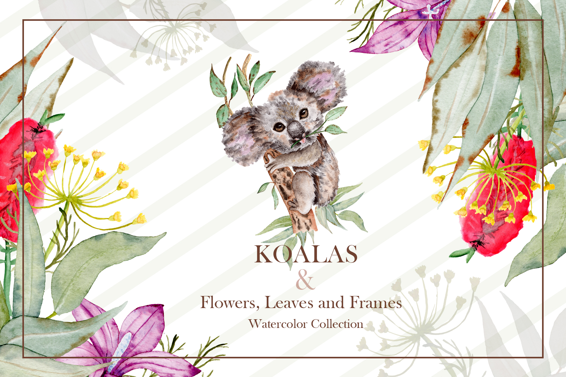 Download Free Watercolor Koala Collection Graphic By Tanatadesign Creative for Cricut Explore, Silhouette and other cutting machines.