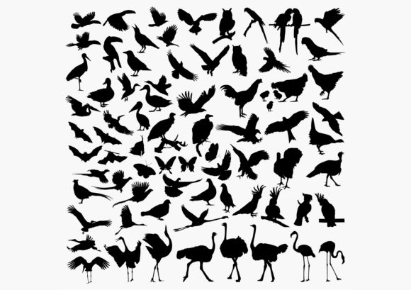 Download Free Birds Silhouettes Graphic By Octopusgraphic Creative Fabrica for Cricut Explore, Silhouette and other cutting machines.